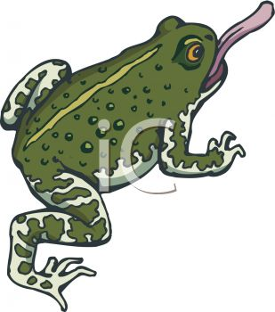 picture of a toad with his purple tongue sticking out in a vector clip art illustration