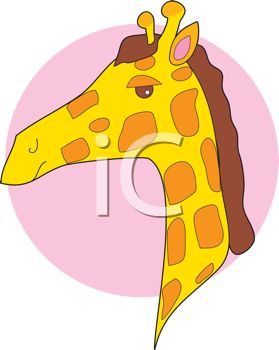 picture of the head of a giraffe on a pink circle background in a vector clip art illustration