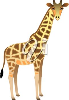 picture of an adult cartoon giraffe standing in a vector clip art illustration