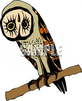 picture of a cartoon owl sitting on a perch in a vector clip art illustration