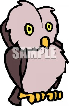 picture of a cute cartoon owl in a vector clip art illustration