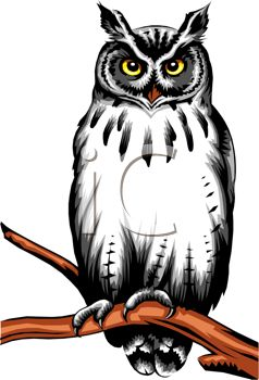 Picture Of A Wise Owl Sitting On Perch In Vector Clip Art Illustration