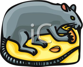 picture of a cartoon mouse standing on a piece of cheese nibbling on it in a vector clip art illustration