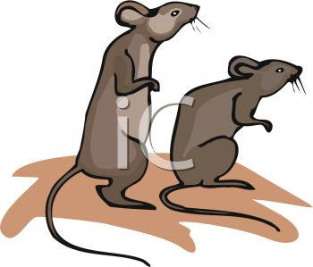 picture of two mice standing on their back legs in a vector clip art illustration