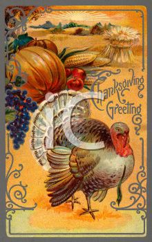 A turkey and harvest vegetables for Thanksgiving
