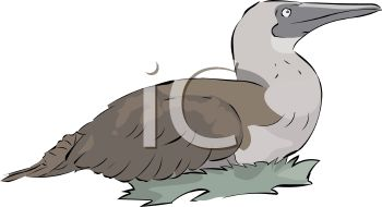 picture of a goose sitting on her nest in a vector clip art illustration