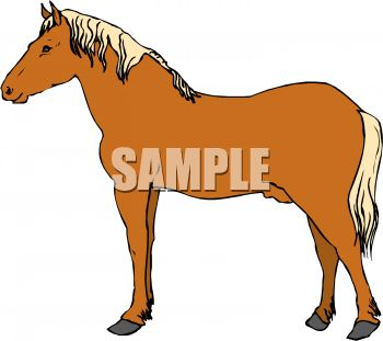 picture of a horse standing in a vector clip art illustration