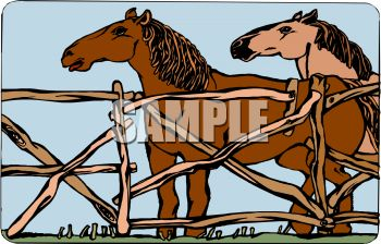 picture of two horses standing in a fenced area in a vector clip art illustration
