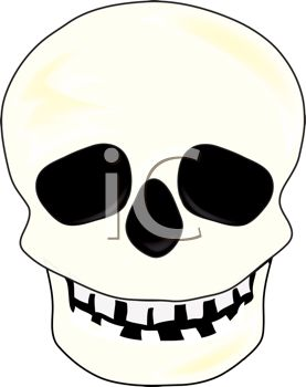 picture of a skull on a white background in a vector clip art illustration