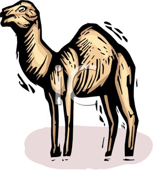 picture of a cartoon camel in a vector clip art illustration