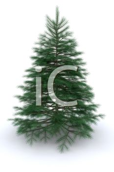 picture of a christmas tree not decorated yet in a vector clip art illustrated