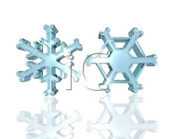 picture of two differently shaped snowflakes on a white background in a vector clip art illustration