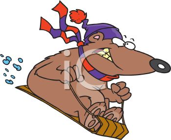 picture of a crazed dog snow sledding down a snowy hill in a vector clip art illustration