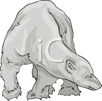 picture of a greyscale polar bear standing and looking at the ground in a vector clip art illustration