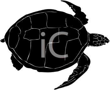 picture of a silhouette of a sea turtle on a white background