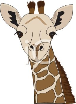 picture of the face of a giraffe in a vector clip art illustration