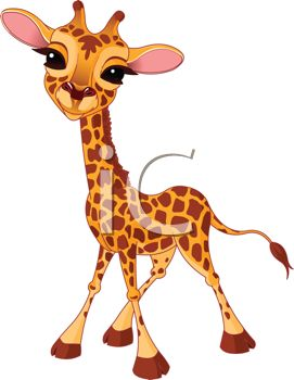 picture of a giraffe calf cartoon with a cute face in a vector clip art illustration