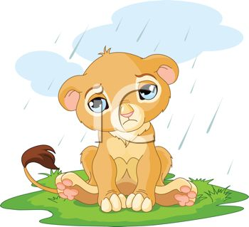 picture of a young lion cub sitting in a patch of grass in the rain with a sad face in a vector clip art illustration