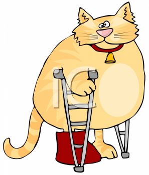 picture of a chubby cat with a broken leg standing on crutches in a vector clip art illustration