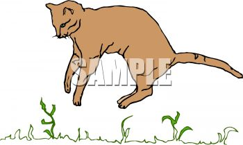 picture of a cat jumping in the grass in a vector clip art illustration