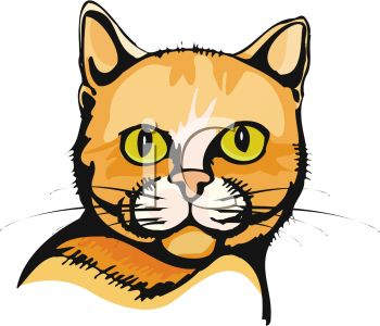 picture of a cat's face in a vector clip art illustration