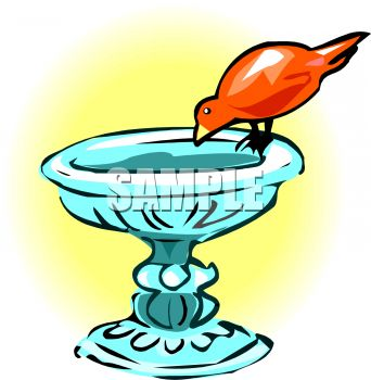 picture of a bird drinking from a bird bath in vector clip art illustration