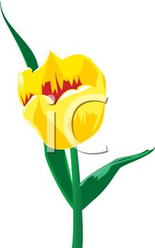Clipart image of a yellow tulip.