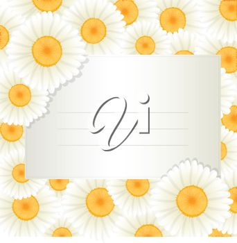 Daisies Surrounding a Blank Card
