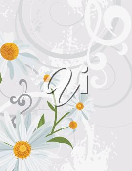 A silver background with daisies