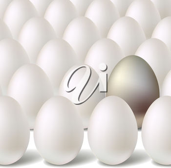 A group of eggs