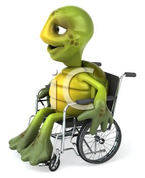 A smiling turtle in a wheelchair