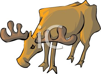 Clipart image of a moose.