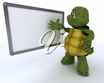 A turtle learning the alphabet