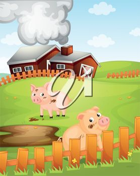 A barnyard with pigs