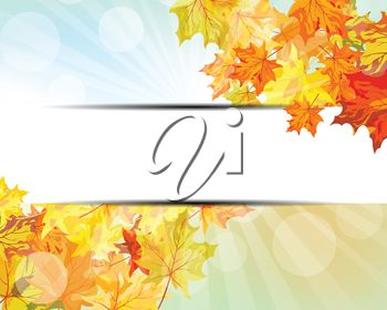 Brightly colored Fall leaves banner