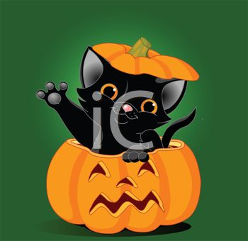 Black Cat Waving from a Jack 'O Lantern