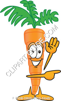 Cartoon Clipart Carrot Pointing