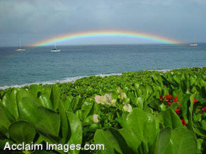 Stock Photography of a Rainbow in Hawaii