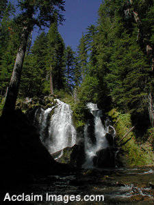 Stock Photography of National Creek Falls, Oregon