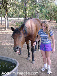 Stock Photography of Horse Laughing