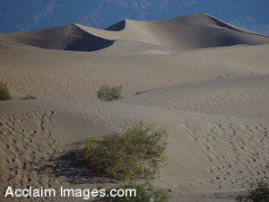 Pictures of Sand Dunes - Death Valley, California