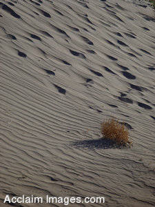 The Sand Patterns of Death Valley