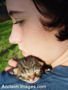 Stock Clipart Photo of a Tiny Kitten Asleep on a Girl's Shoulder