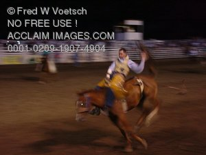 Rodeo Photos - Bronco Rider