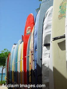 Stock Photo of a Bunch of Surfboards