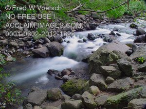 Stock Photo of a Flowing Stream in the Iao Valley, Maui, Hawaii