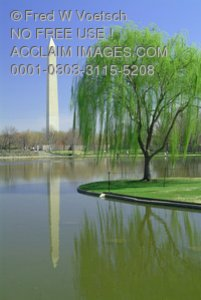 Stock Photo of The Washington Monument Reflected on a Pond