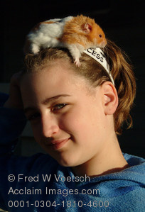 Stock Photo of a Girl With Hamster On Her Head