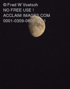 Stock Photo of The Moon