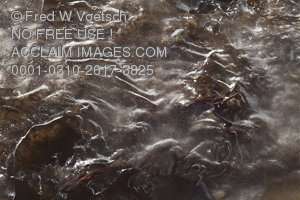 Stock Photo of Natural Ice Formations